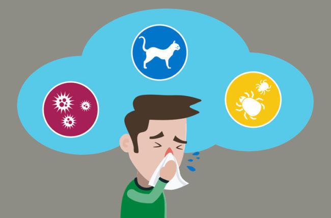 Alergiile in sezonul rece