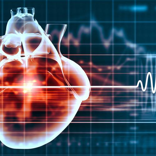Ecocardiografia ca metoda de diagnostic
